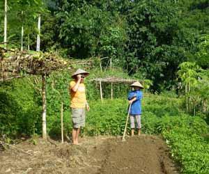 Passion du vietnam for Acheter une maison au vietnam